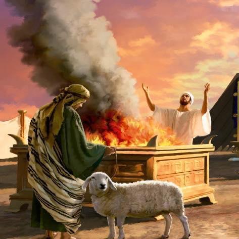 Los Testigos de Jehová y La Sangre – Parte 4
